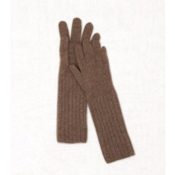 Wool Cashmere Gloves in Camel
